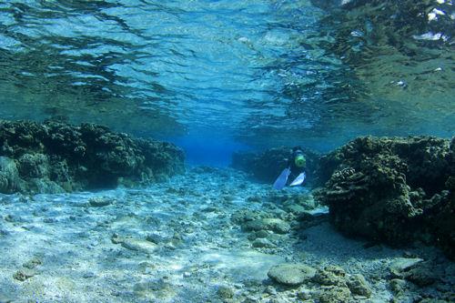 世界一美しい海底散歩道!!