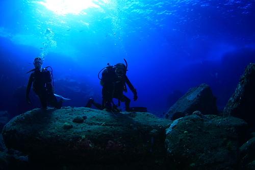 ガイドと海を貸切~じっくりと撮影できます!!